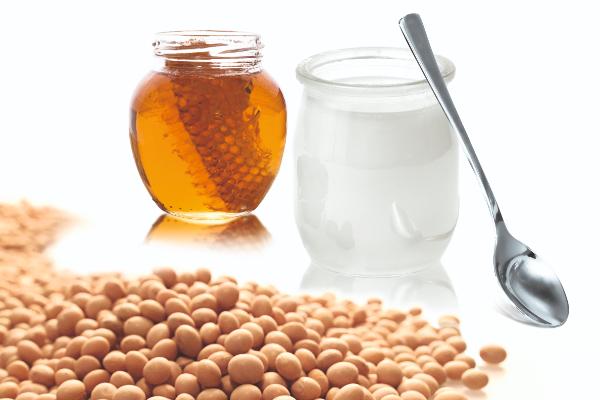 almased-diet-product